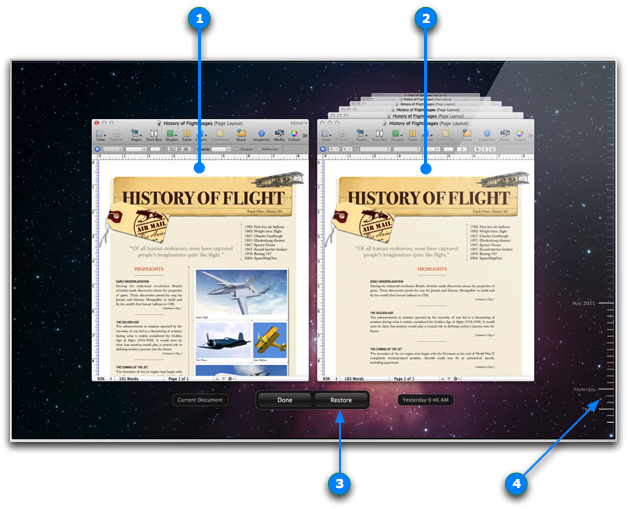 Good Example: Document History